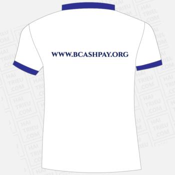 ao bcashpay.org